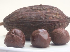 Amazing Chocolate Truffles (nut free)